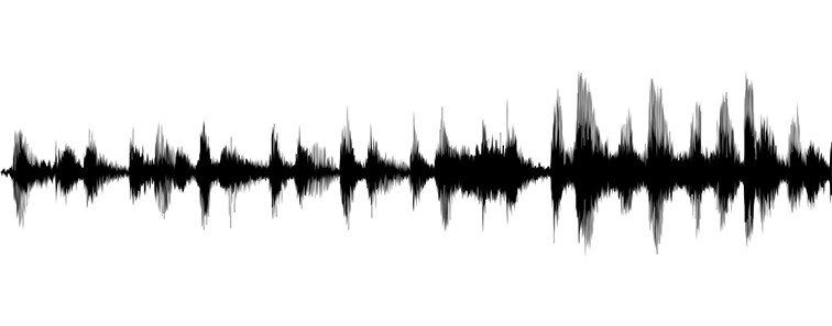 voice recognition waves